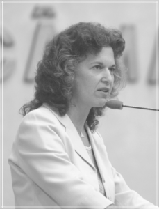Angélica Konzen 2005 - 2008