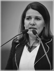 Luiza Neves 2013-2016