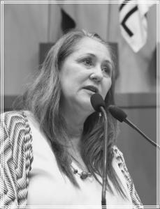 Lourdes Sprenger 2013 - 2016